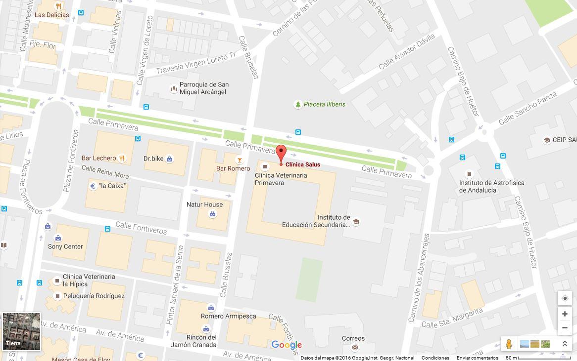 Clínica Salus - Google Maps