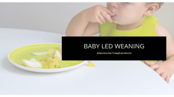 TALLER BABY LED WEANING GRANADA